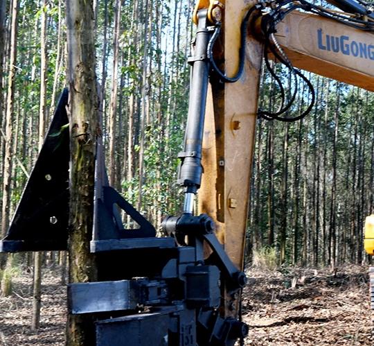 巴西林场伐木,柳工设备演绎鬼斧神工!
