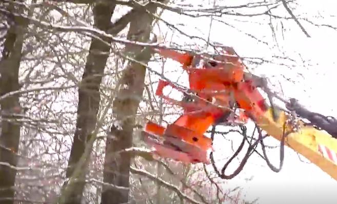 國外小鎮邊修剪樹枝,都是用這種挖掘機!