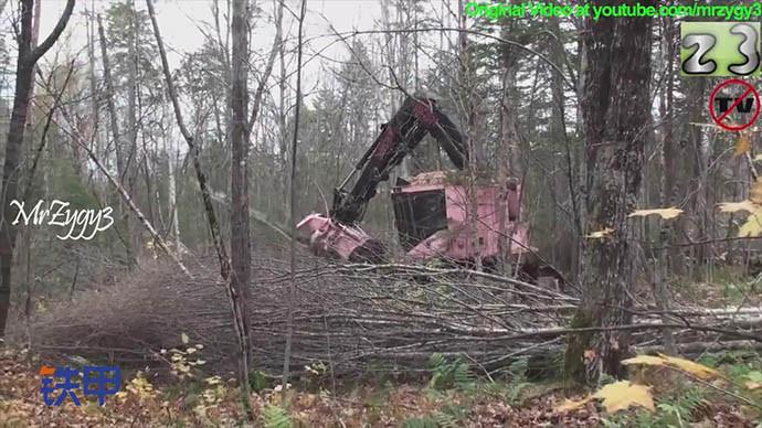 【眼界】粉红色林业伐木设备工作起来也萌萌哒有没有