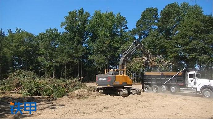 【眼界】光头强的小弟,沃尔沃挖掘机装树作业
