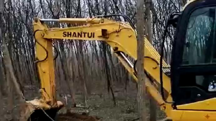 山推SE50挖掘机树林施工