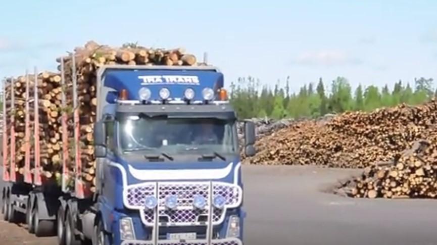 国外夹木机Volvo FH12 6x2 Timber Truck