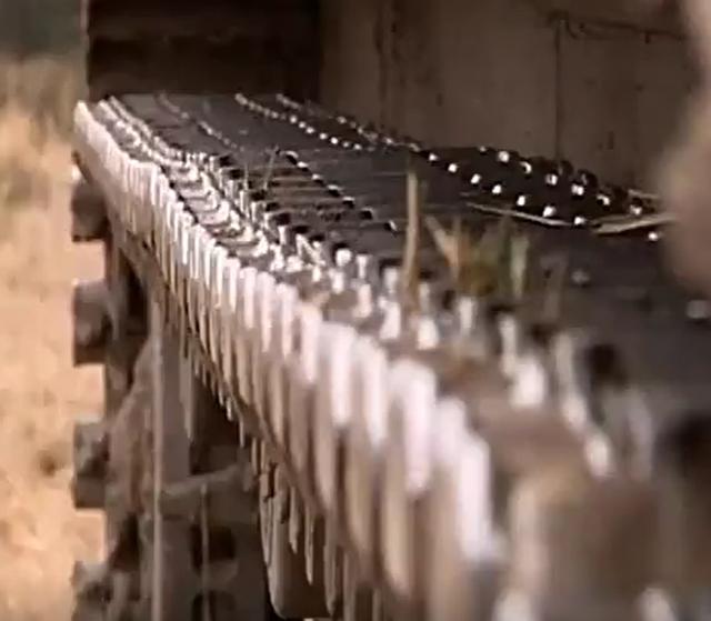 挖掘机Vs坦克车视频特技表演