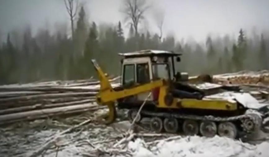 伐木怪獸砍樹頂十個工人一個月工作