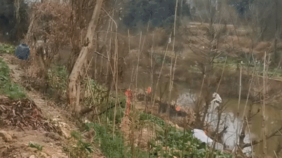宜春一挖掘机翻下7米陡坡滚进河道!司机被困河中…