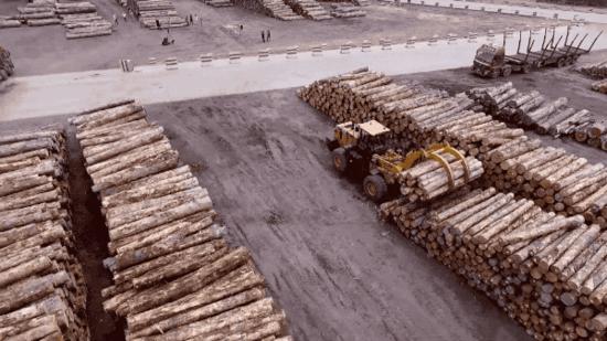 港口抓木选择山工机械,没问题!