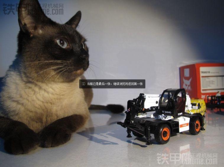 山猫 TR50210 多功能升降机 1:50 BOBCAT TR50210