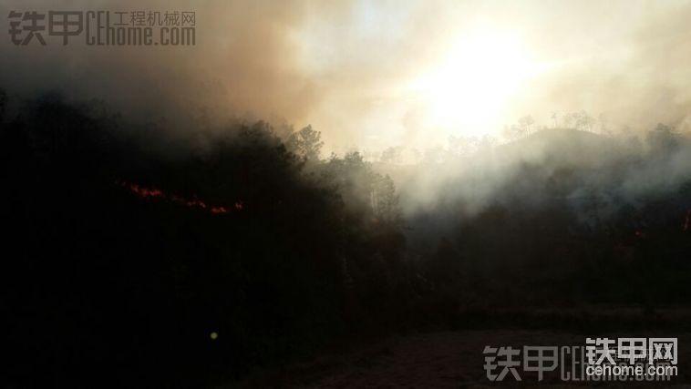 干活干著干著后面的山著火了-帖子圖片