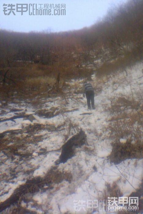 事故猛于虎,470大挖滑下崖救援《》-帖子图片
