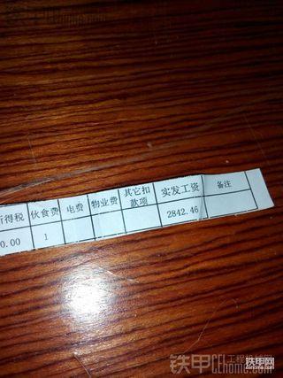 CAT988KO-8的大菊花