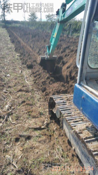猕猴桃建园挖槽
