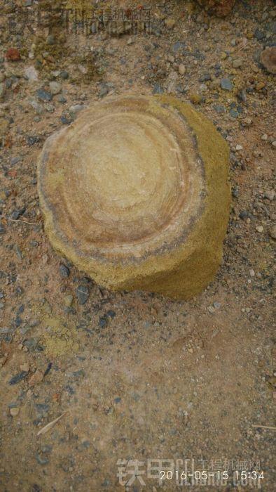 石头也有年轮?