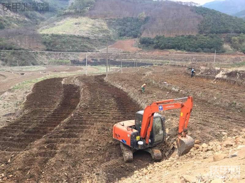 挖甘蔗地,坐標百色田林八桂