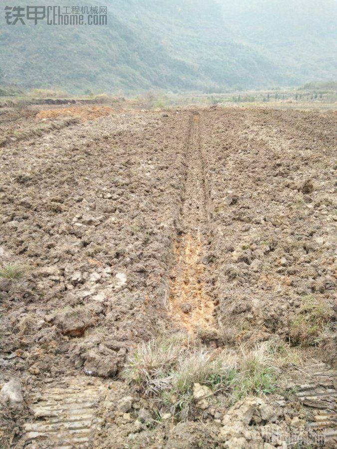 各位兄弟,你们像这样的地70机能挖多少亩?