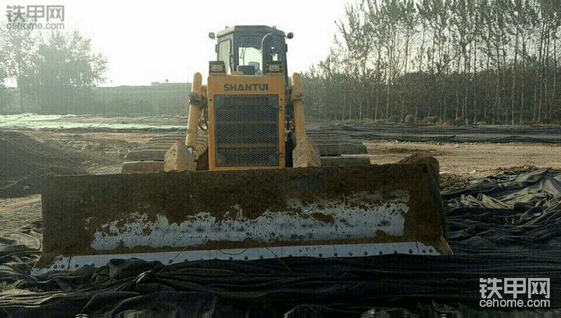 新款湿地16出售