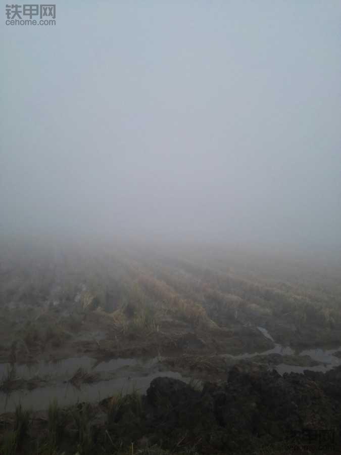 这雾还能再大点吗?