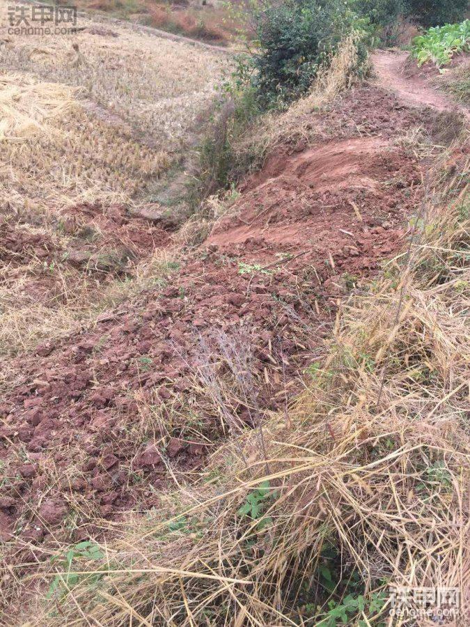 开挖机遇到80度的坡 试问有几个人敢上?