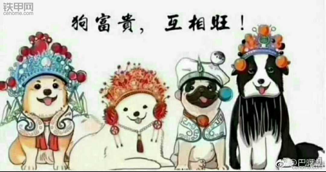 新年快乐哈!
