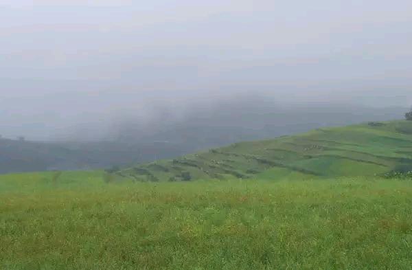 【矿山往事】西坪村,我的美丽乡愁!
