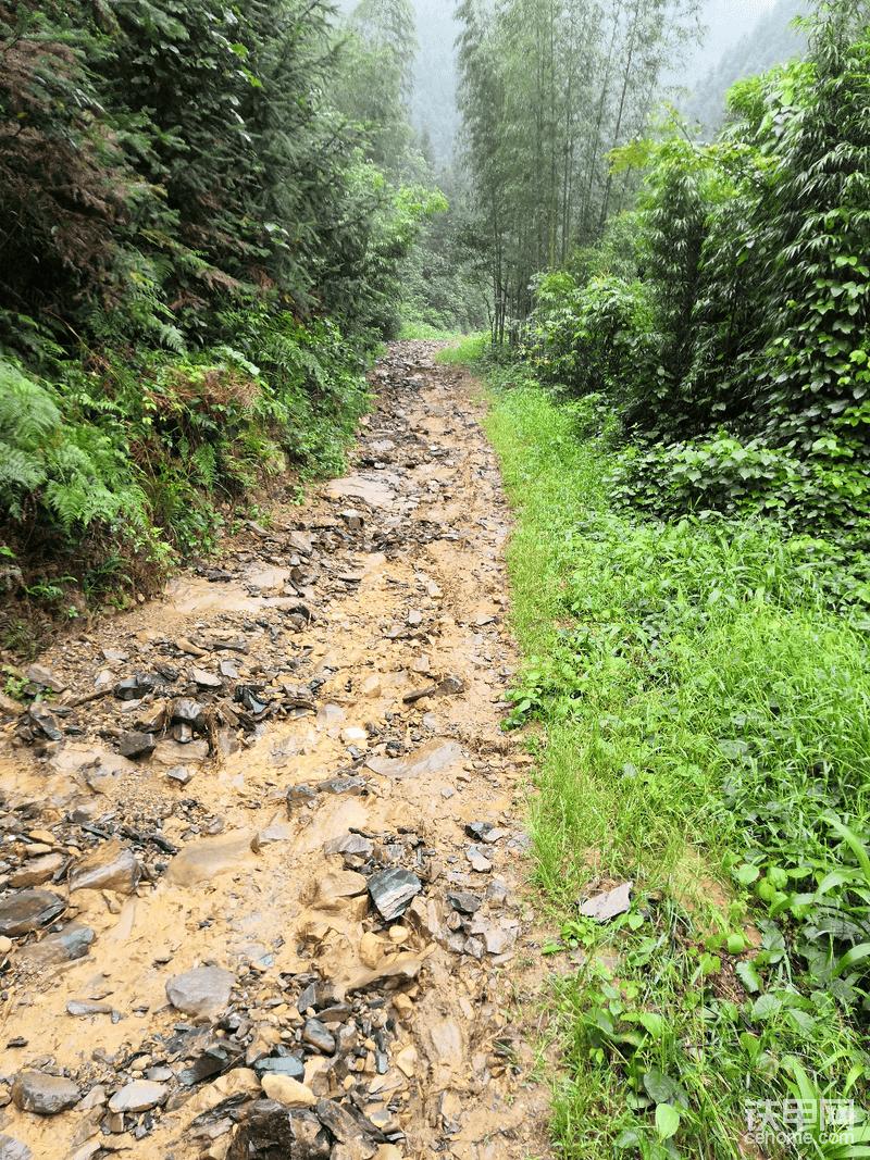 进山的路,上个月下大雨,原来修的路让水全冲了,里面有片山的木材运不出来,老板叫挖机过来把路给修下