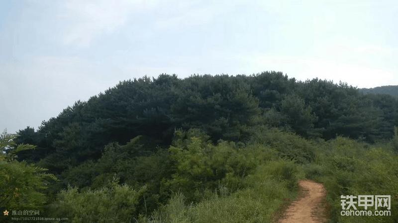 这是这样的山路