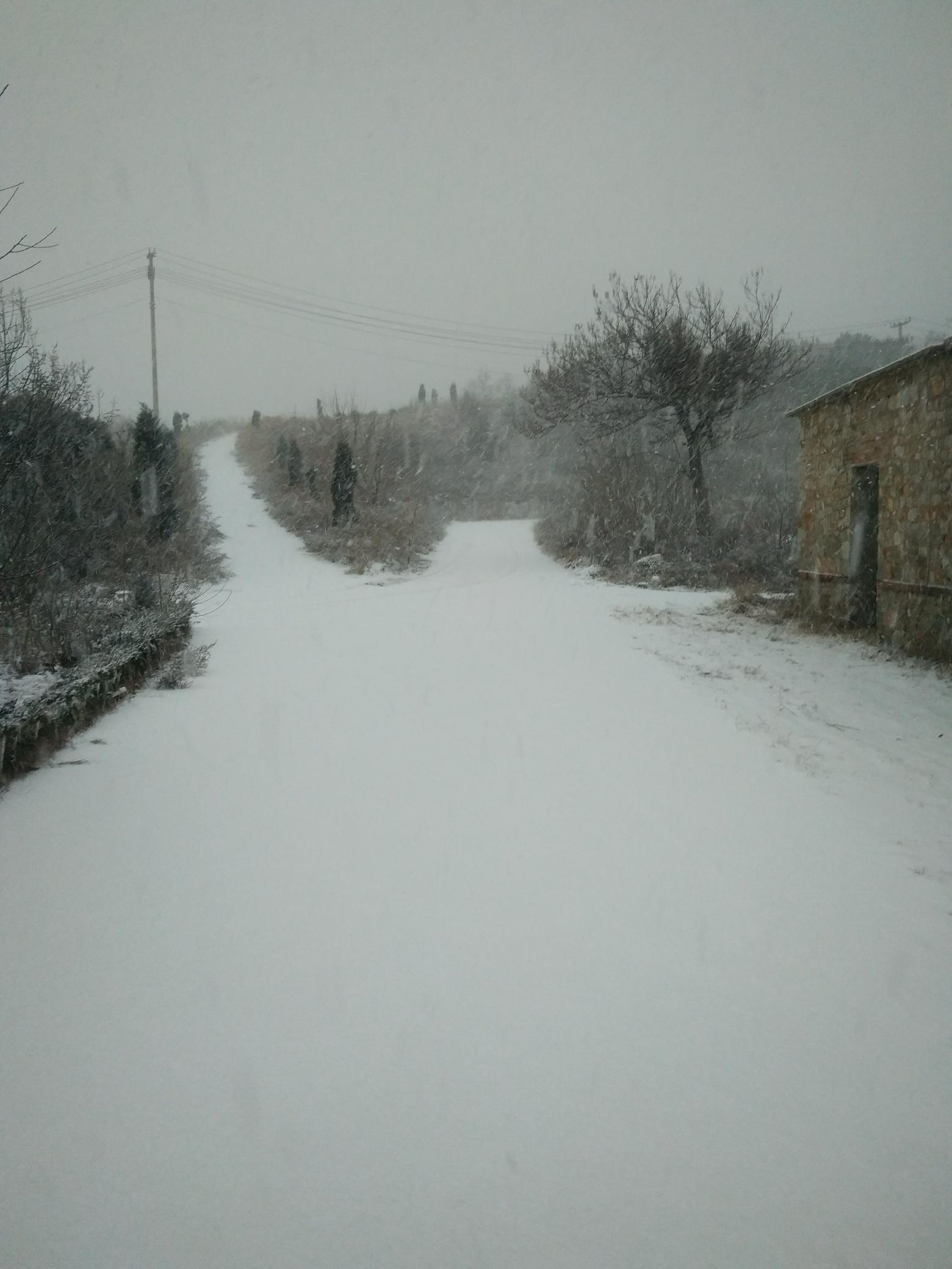 老铁们早上好又下雪了