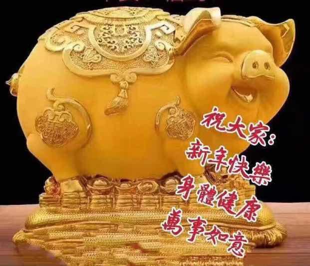 进来看的猪年发大财,