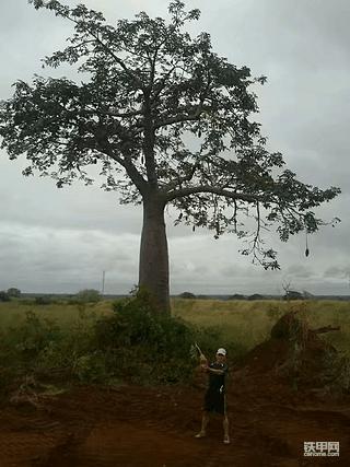 我在安哥拉开挖机2:中介倒闭,捐钱跑路!