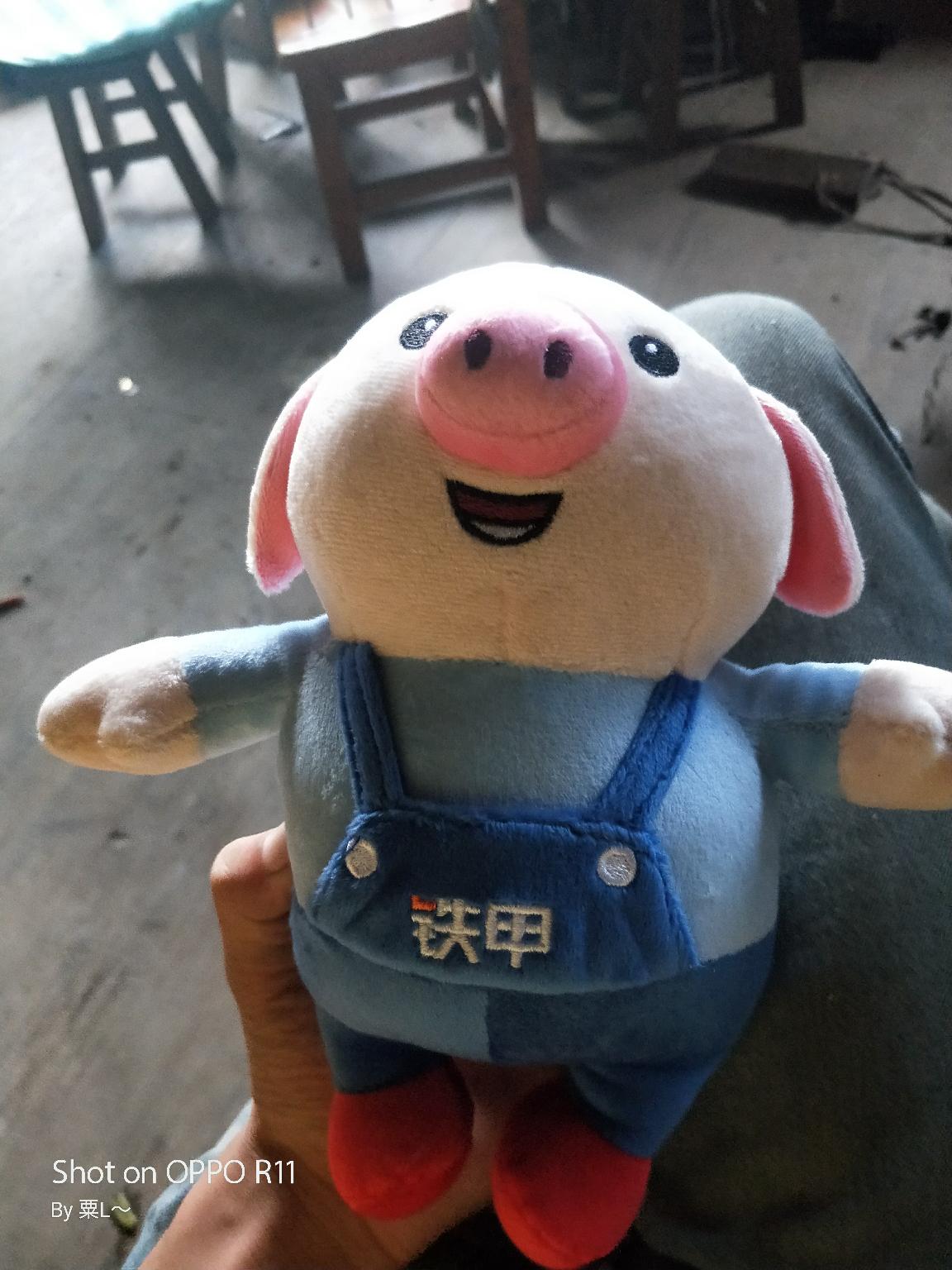 小猪猪到啦