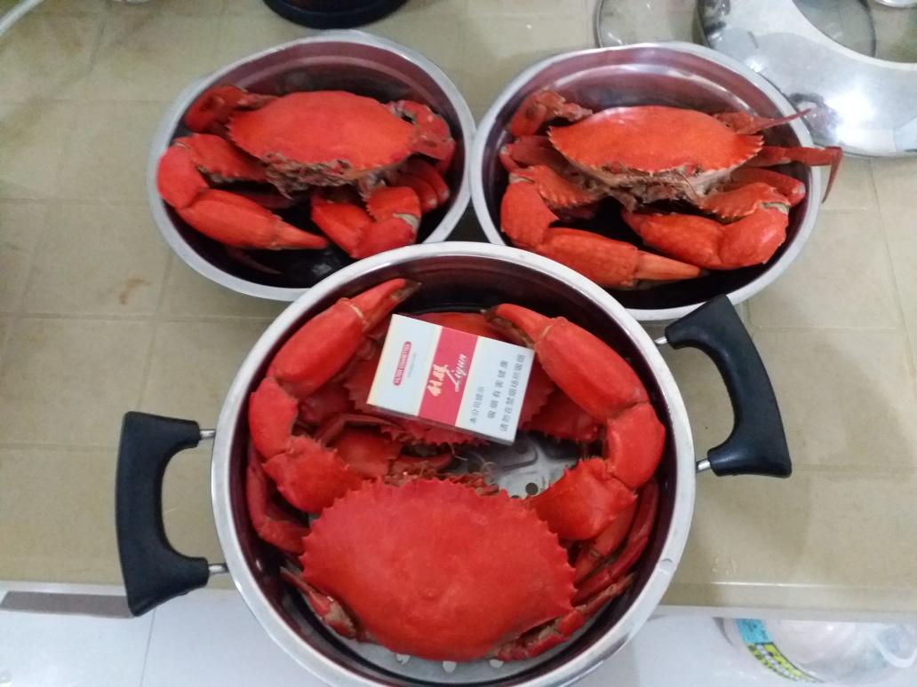 菲律宾大青蟹