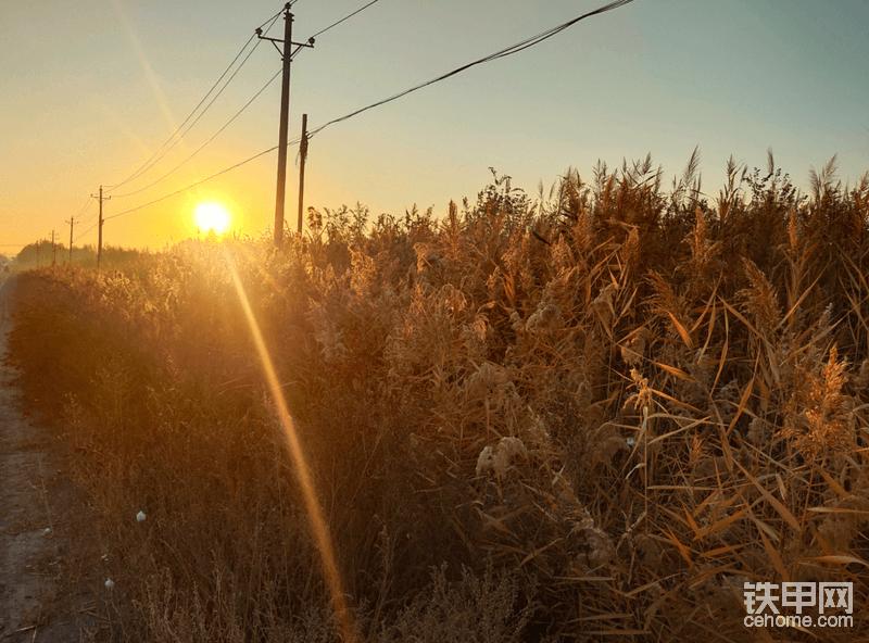 美好的一天从朝阳开始。