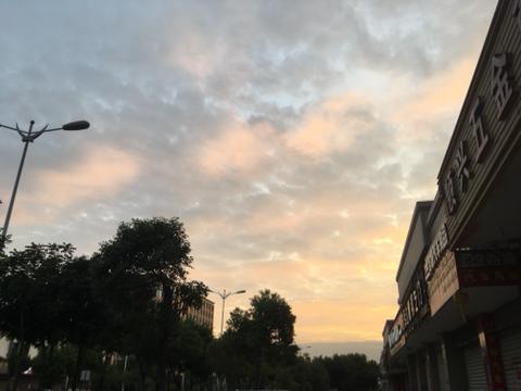 【甲友的一天】晚上做梦千条路,早上起来走原路