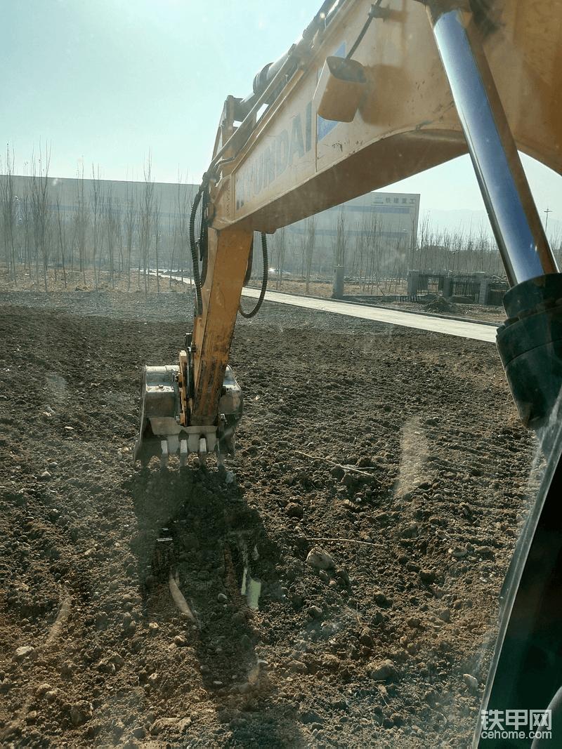 垫完靠背土,开始大面积平场地,要求就是靠路沿石一圈低十公分左右,中间不要有明显大坑和大鼓包,大概平一下就行,后期还要上牛粪,旋耕机犁一遍,表面土松软撒草籽只种草坪。