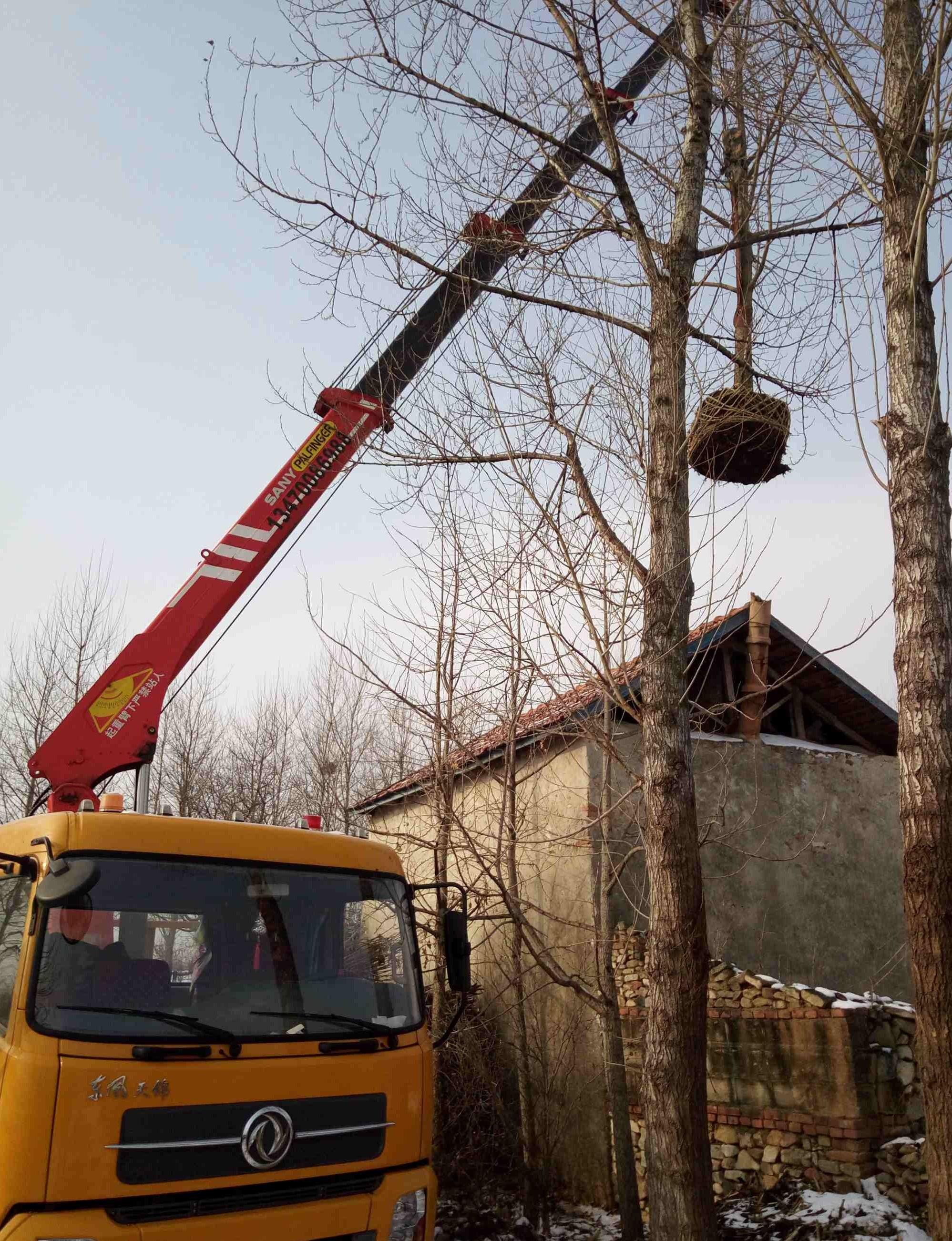 我吊过的各种东西——起重机的奇葩用途!