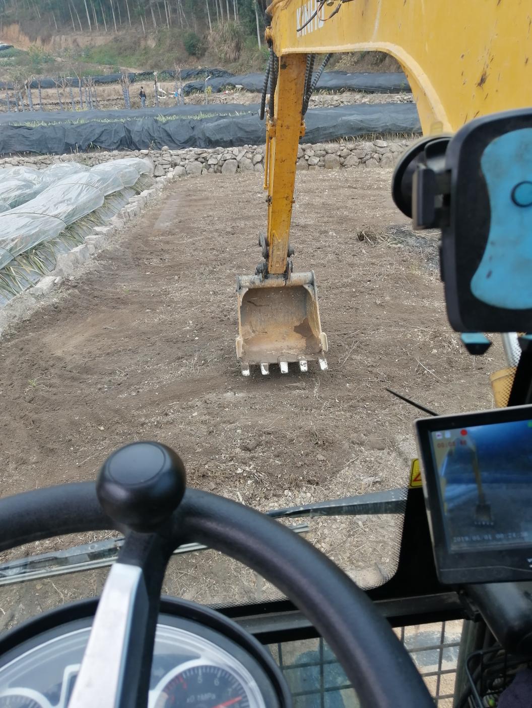 【金鼠打卡第3天】早上整完绿化田,接着搞土方