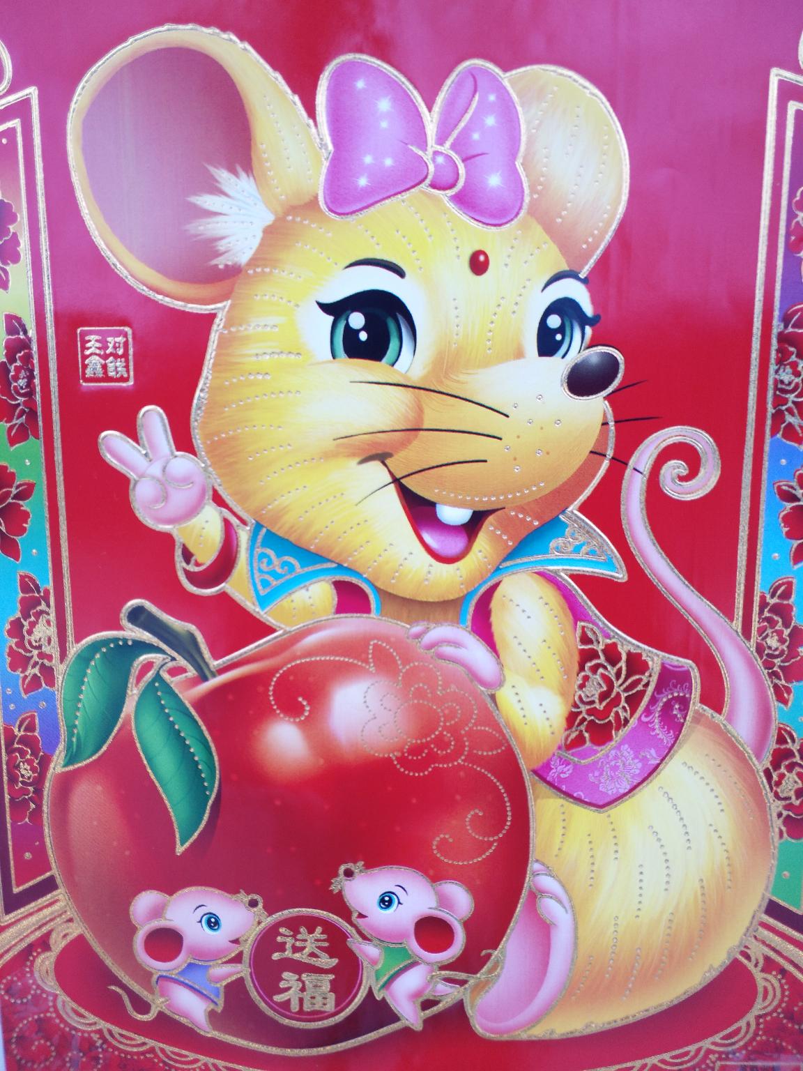 【金鼠打卡第7天】不平凡的新年