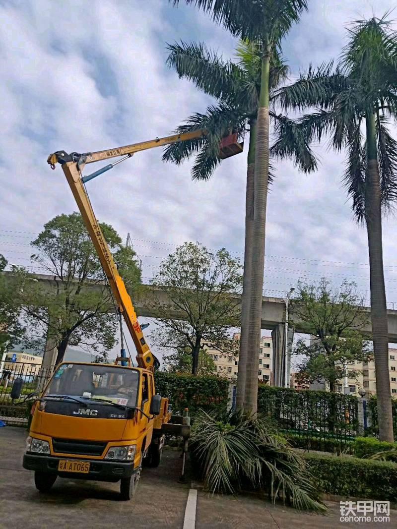 綠化園林樹枝怎么辦路燈吊籃車為解憂-帖子圖片