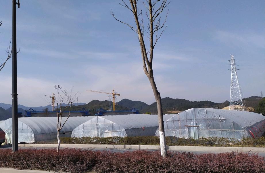 【铁甲日记第四十二天】草莓园